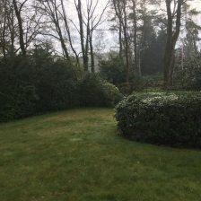 zo was de tuin